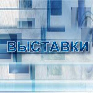 Выставки Щигров